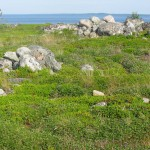 Большой Заяцкий остров. Каменный лабиринт.