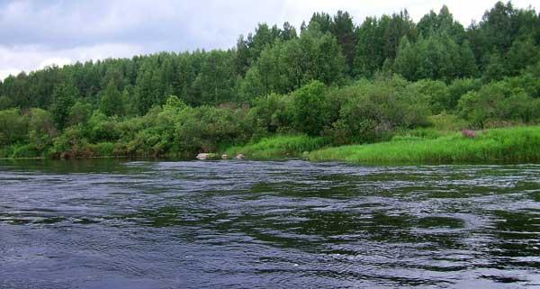 Река Шуя в Карелии.